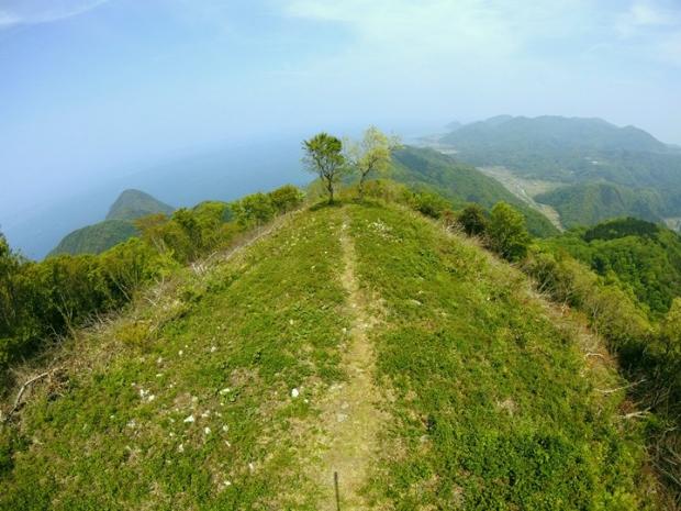 新緑の依遅ヶ尾山に登る